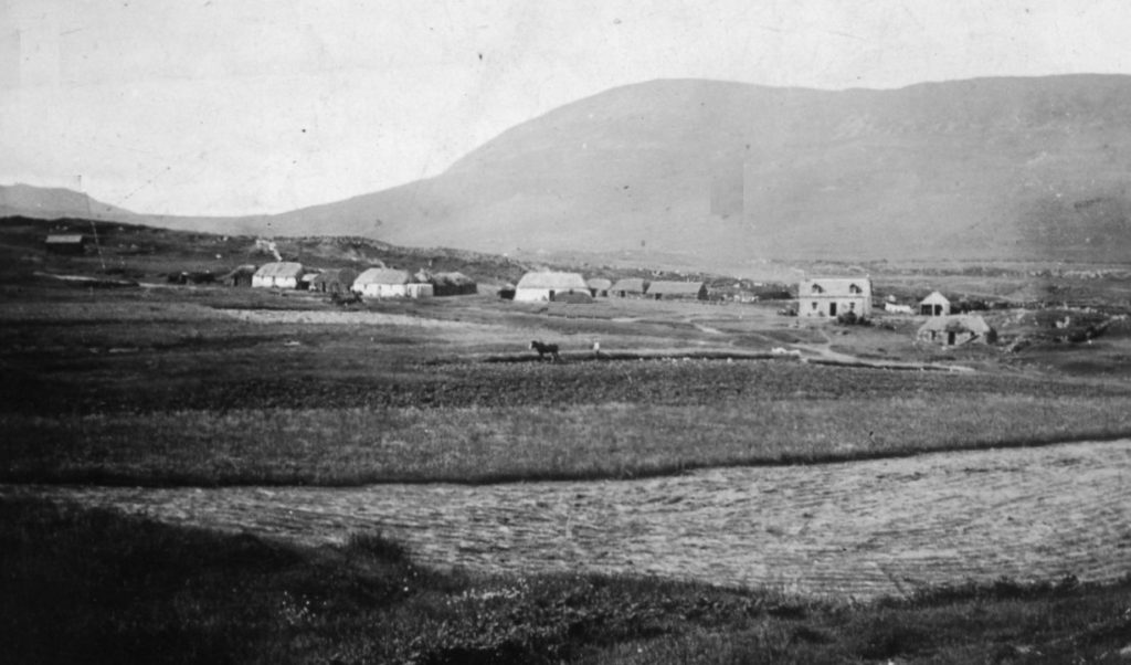 Kilmory croft fields