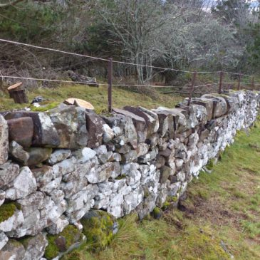 Wall Repair Completed