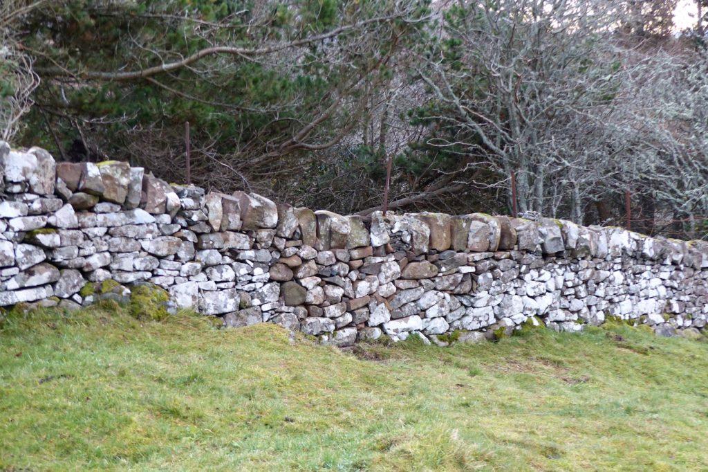 2-wall